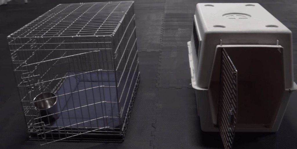 Types of Puppy Crates