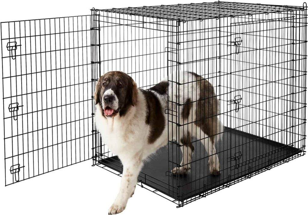 Dogs Crate Loving Animals